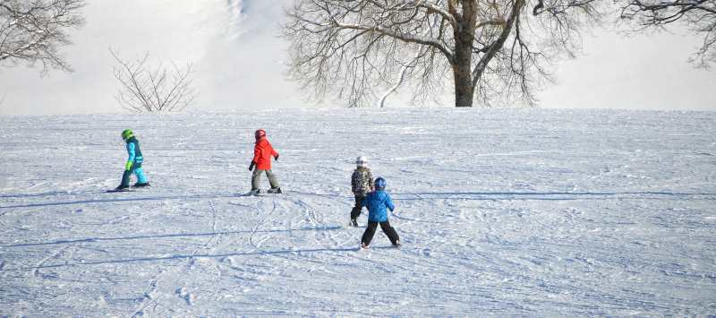 beginners skiing down a small hill