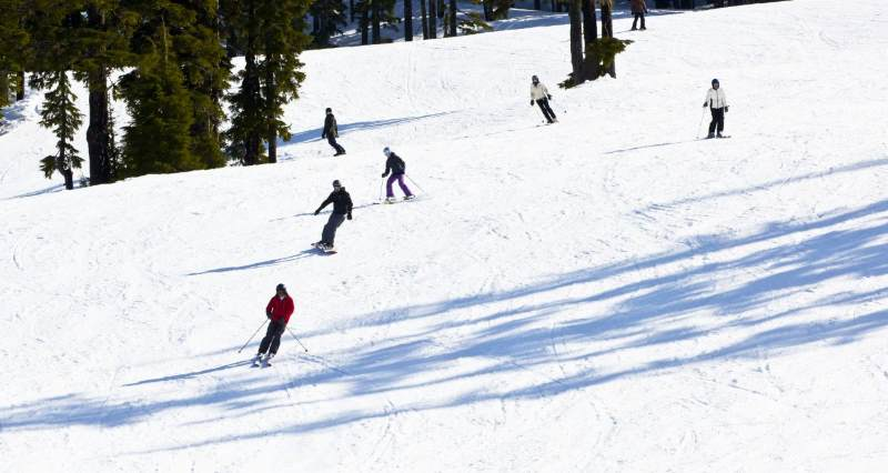 skiers going down an easy hill